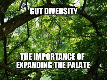 gut diversity